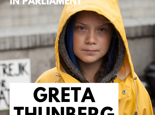 Greta Thunberg with the APPG Climate Change and Policy Connect