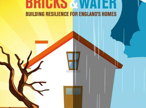 WSBF Launches Bricks and Water