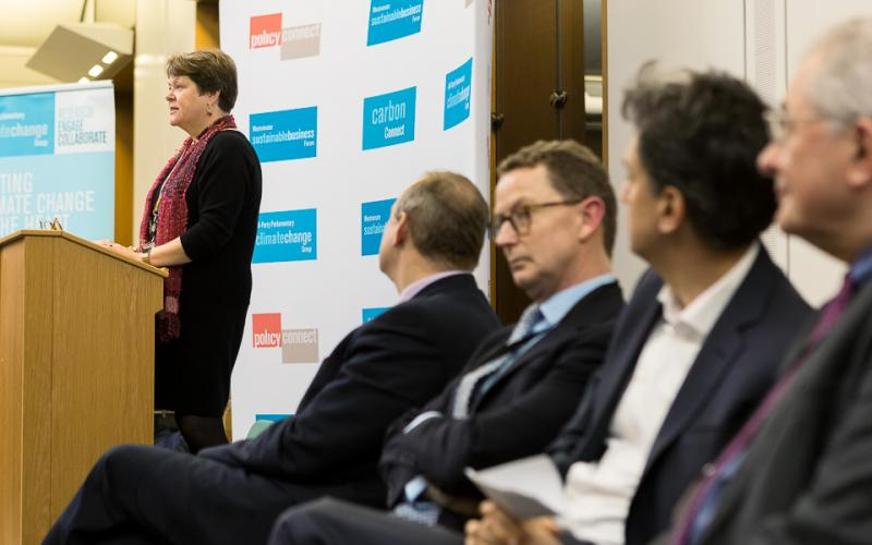 Baroness Brown at the net zero Britain conference